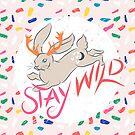 Bleib wild von Amy Grace