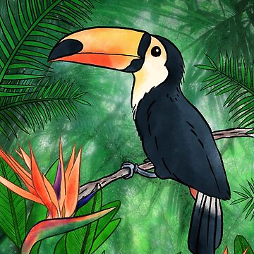 Toucan Illustration by hellobubblegum