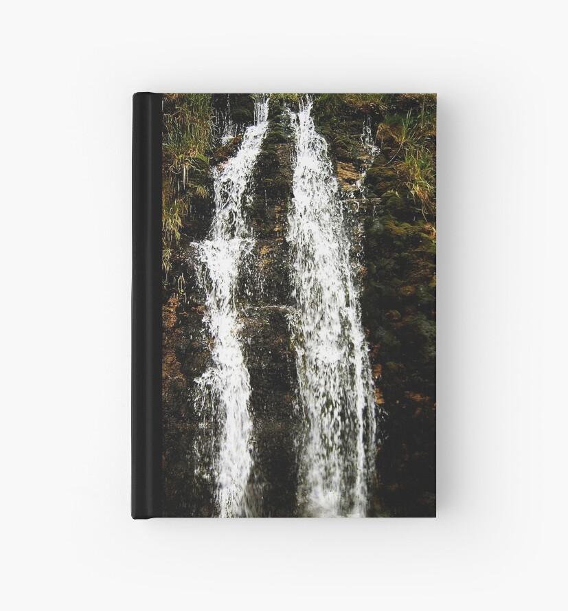 The WaterFall by brandie