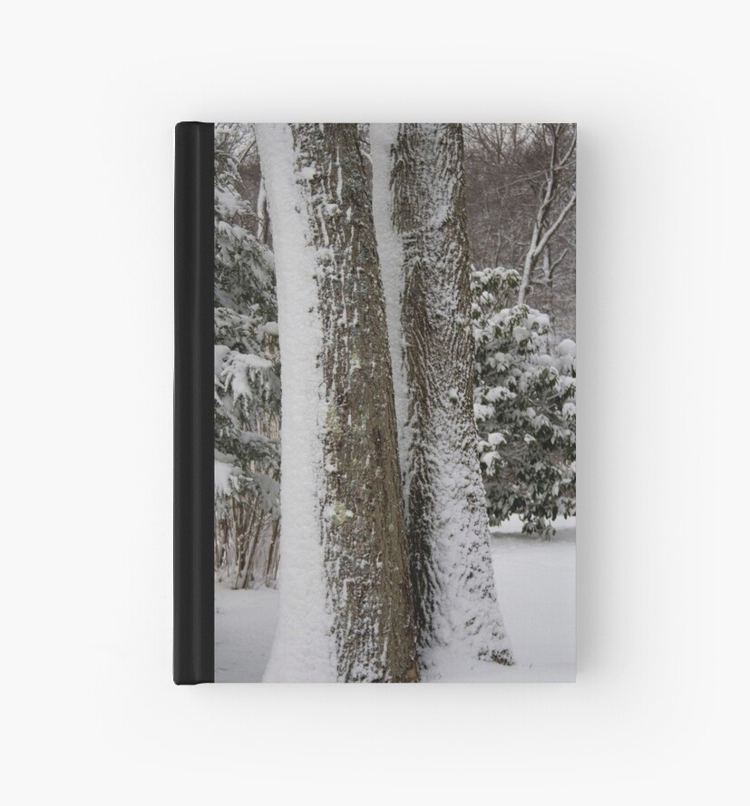 Recent Snow Serie: Snowfall I by Dan Cahill