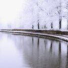 Snow 1 by ROSE DEWHURST