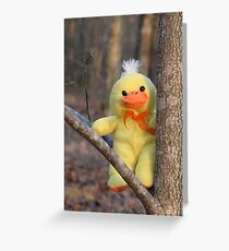 I'm So Cute, No Need To Comment!! Greeting Card