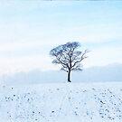 Snow 2 by ROSE DEWHURST