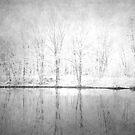 Snow 3 by ROSE DEWHURST
