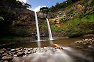 Wailua Falls by Flux Photography