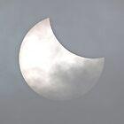 PARTIAL SOLAR ECLIPSE by Cristina C.p.Neumann