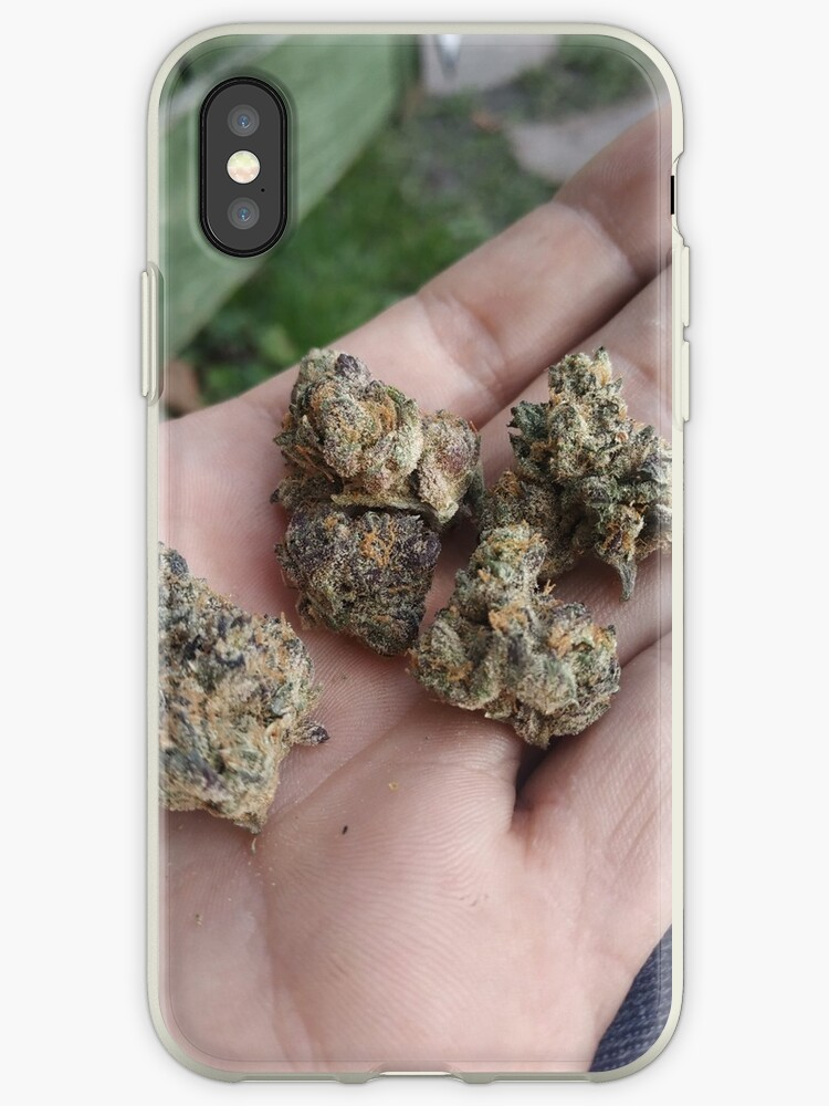 'Jungle boys gelato buds 420 Ganja' iPhone Case by srascal