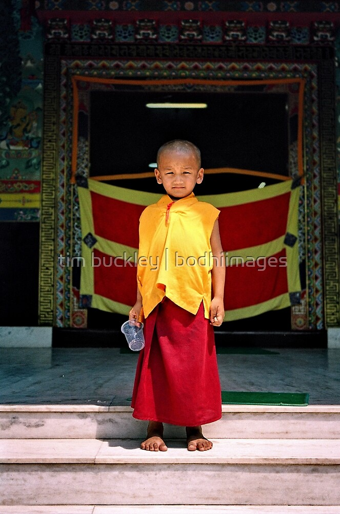 future buddha. northern india by tim buckley   bodhiimages