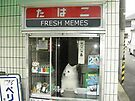 Fresh Memes For Sale by Elisecv