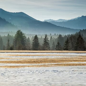 Winter Layers by Kasia-D