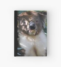 Koala Hardcover Journal