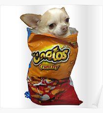Crunch Doge Poster