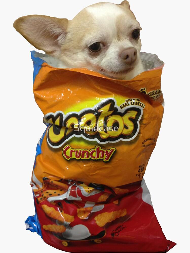 Crunch Doge von Squidcase