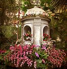 Orchid Display by Jessica Jenney