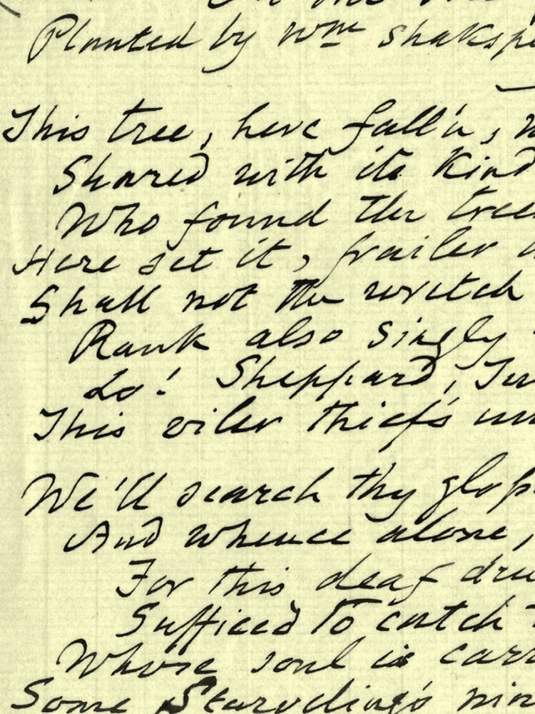 Literary Manuscript by daltonrowe