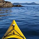 Kayaking Decatur Island by Betsy  Seeton