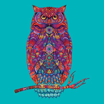 Owl - Adult Colouring | COLOURING - ARTWORKS by mcaussieb