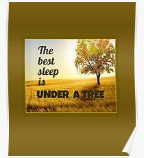 Bester Schlaf ist unter einem Baum Poster