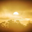 Sunrise_New Beginings by Blackpaw  Photography