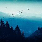 Blue Valmalenco, Italy by Dirk Wuestenhagen