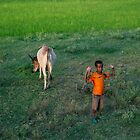 Antsokia Valley, Ethiopia by docophoto