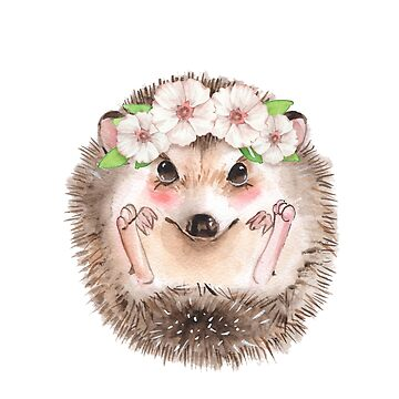 Spring hedgehog by Gribanessa