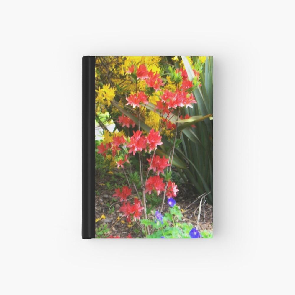 colours Notizbuch