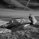 Ancient and Modern, Bodmin Moor by BearRHumphreys
