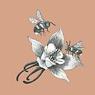 honey bees and wild flowers on chocolate latte background by EllenLambrichts