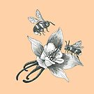 honey bees and wild flowers on apricot background by EllenLambrichts