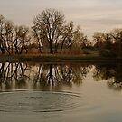 Reflections and Ripples by Pamela Hubbard