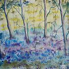 Bluebell Wood by FrancesArt