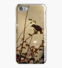 Bird in the Bush iPhone Case/Skin