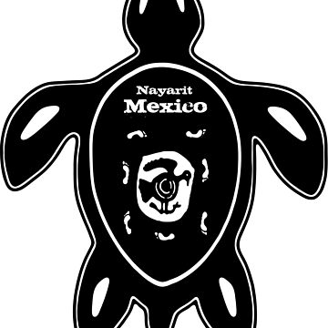 Nayarit Mexico Turtle by lemmy666
