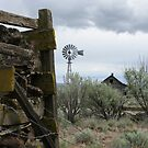 Rock Crib and Abandoned Homestead by Dave Stephens