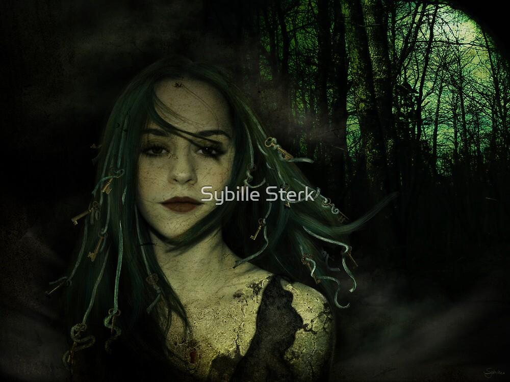 The Secret Keeper by Sybille Sterk