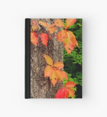 Be Hardcover Journal