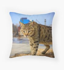Urban Panther  Throw Pillow