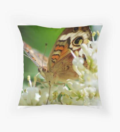 Butterfly album, butterfly Nr.1 Throw Pillow