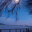 Winter moon, Dalkeith Country Park, Scotland by Michael Marten