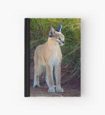 Lynx  Hardcover Journal