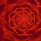 Orange Textile Rose by Barbara A Lane