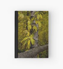 Changes Hardcover Journal
