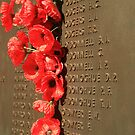 Canberra: Roll Of Honour at the National War Memorial 002 by Kezzarama