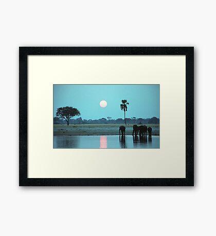 Sunset Drink Framed Print