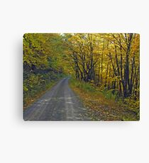 Follow The Yellow Hick Road Canvas Print