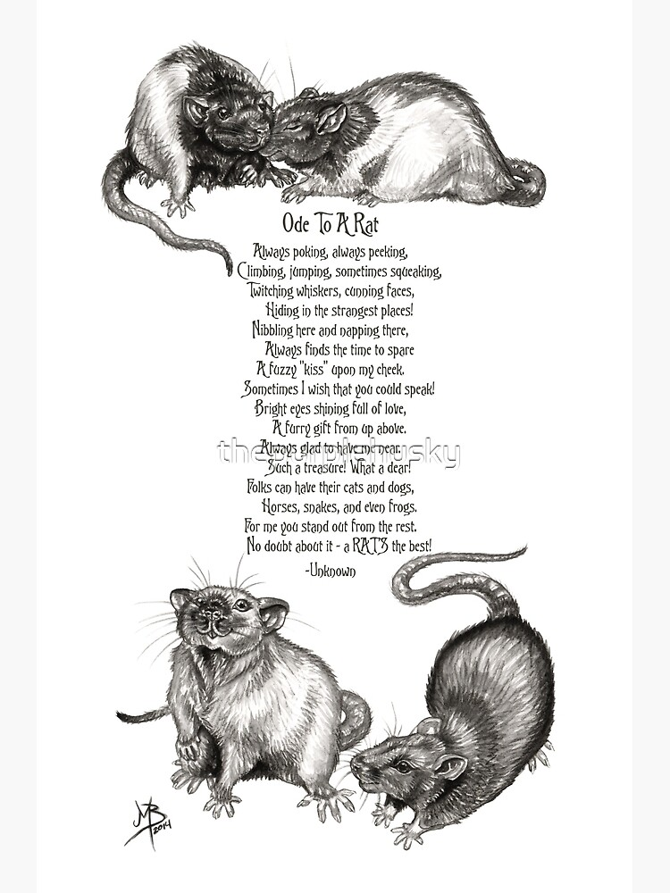 Ode To A Rat by thepurplehusky