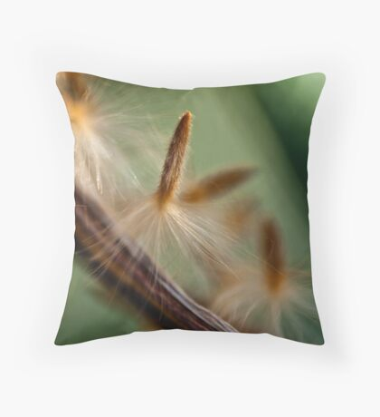 Softness Throw Pillow