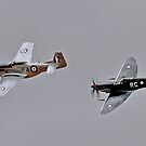 Twin Fighters, Spitfire and Mustang by bazcelt