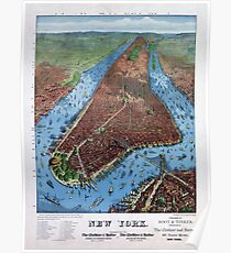 Póster New York Vintage Aerial views Restored 1879